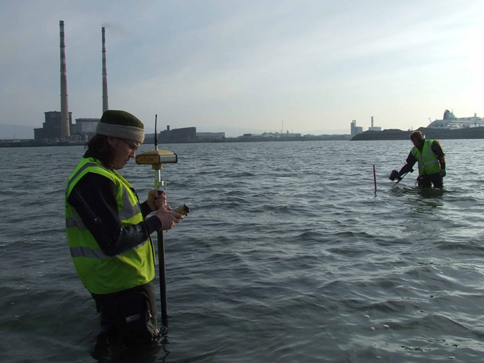 Intertidal Survey and Assessment, Dublin Gateway Project, Dublin