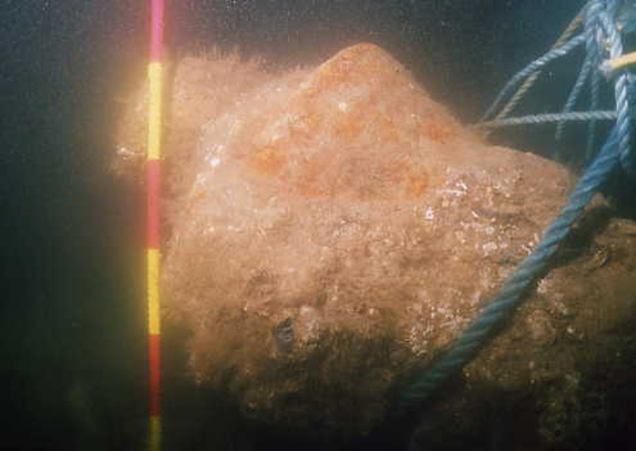 Iron cannon encountered as part of an underwater survey to identify the location a 17th-century shipwreck on Duncannon Bar, Waterford Estuary, Ireland.