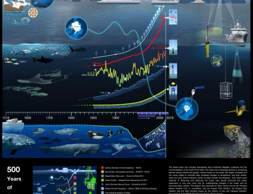 500 Years of Ocean Change